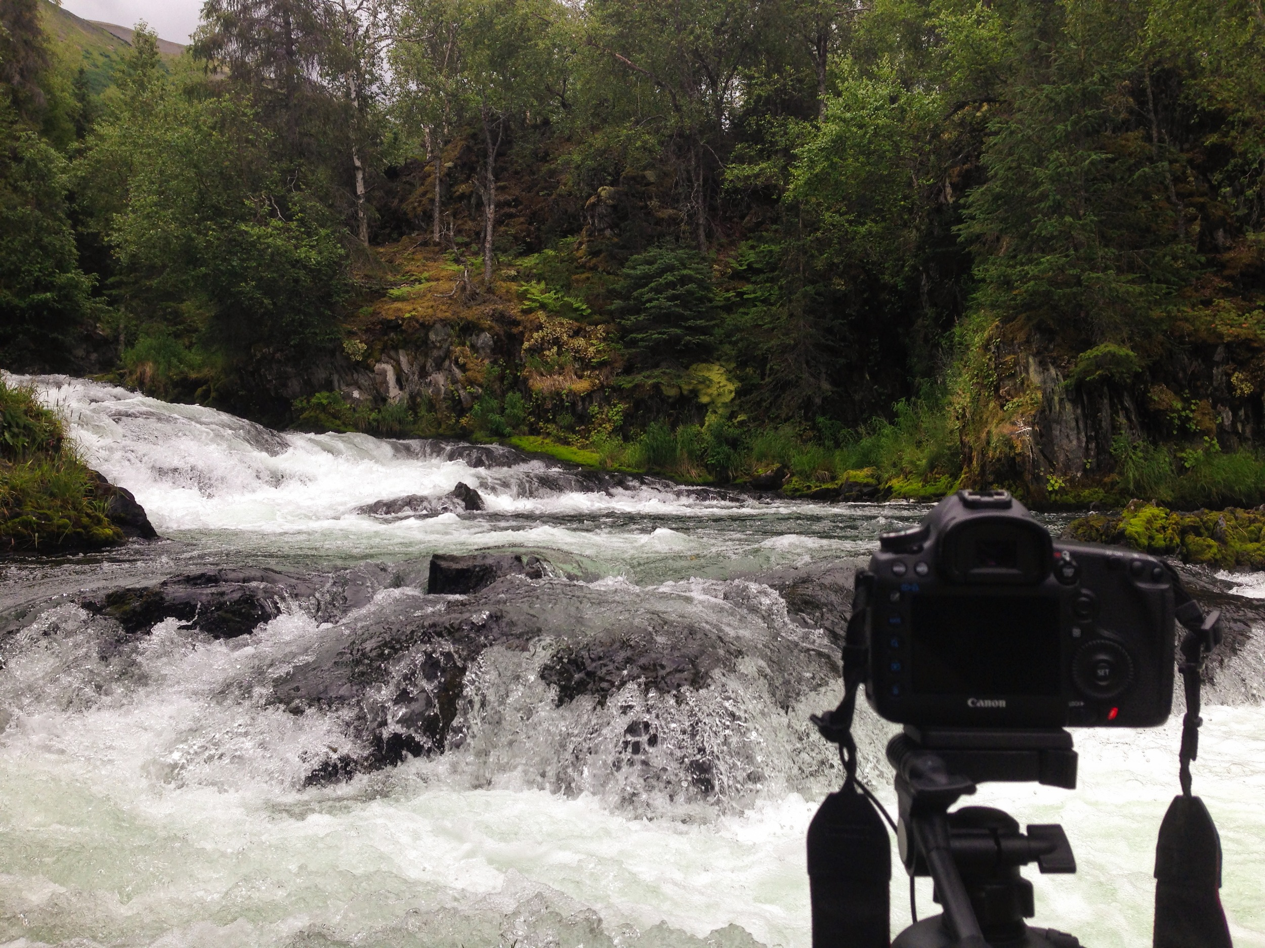 Tyler films spawning salmon on the Russian River while Brian looksfor someone to ridethe rapids with himon the tandem bike.
