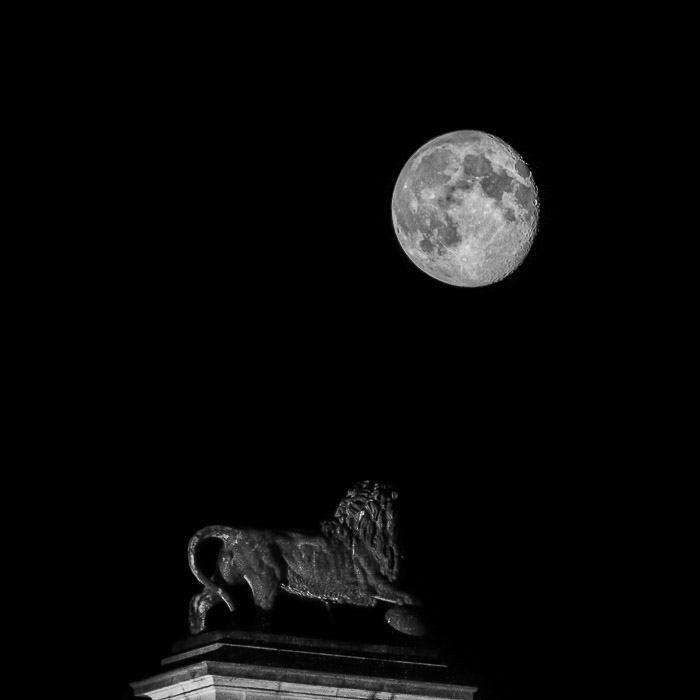 Moon-Photography-Statue-under-High-Contrast-Moon.jpg