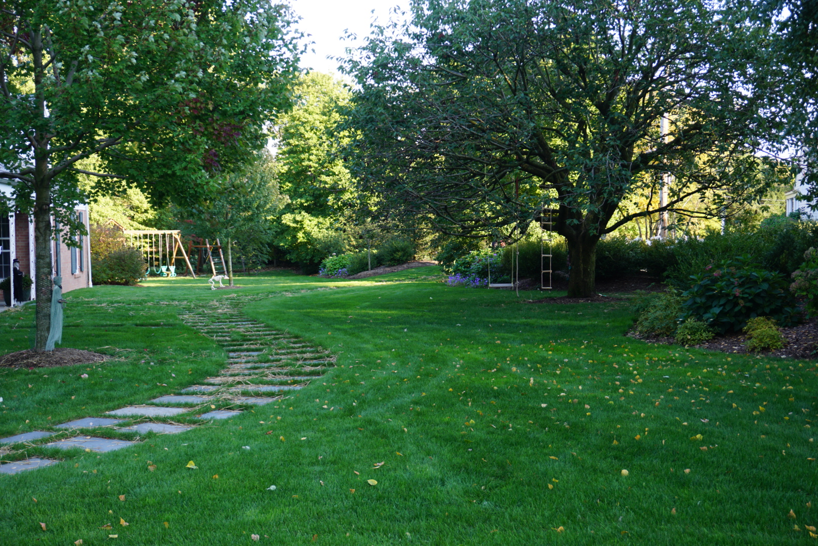 The Albarracins' Yard