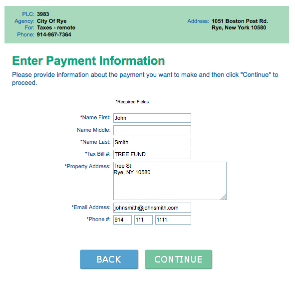 Click to see sample online payment