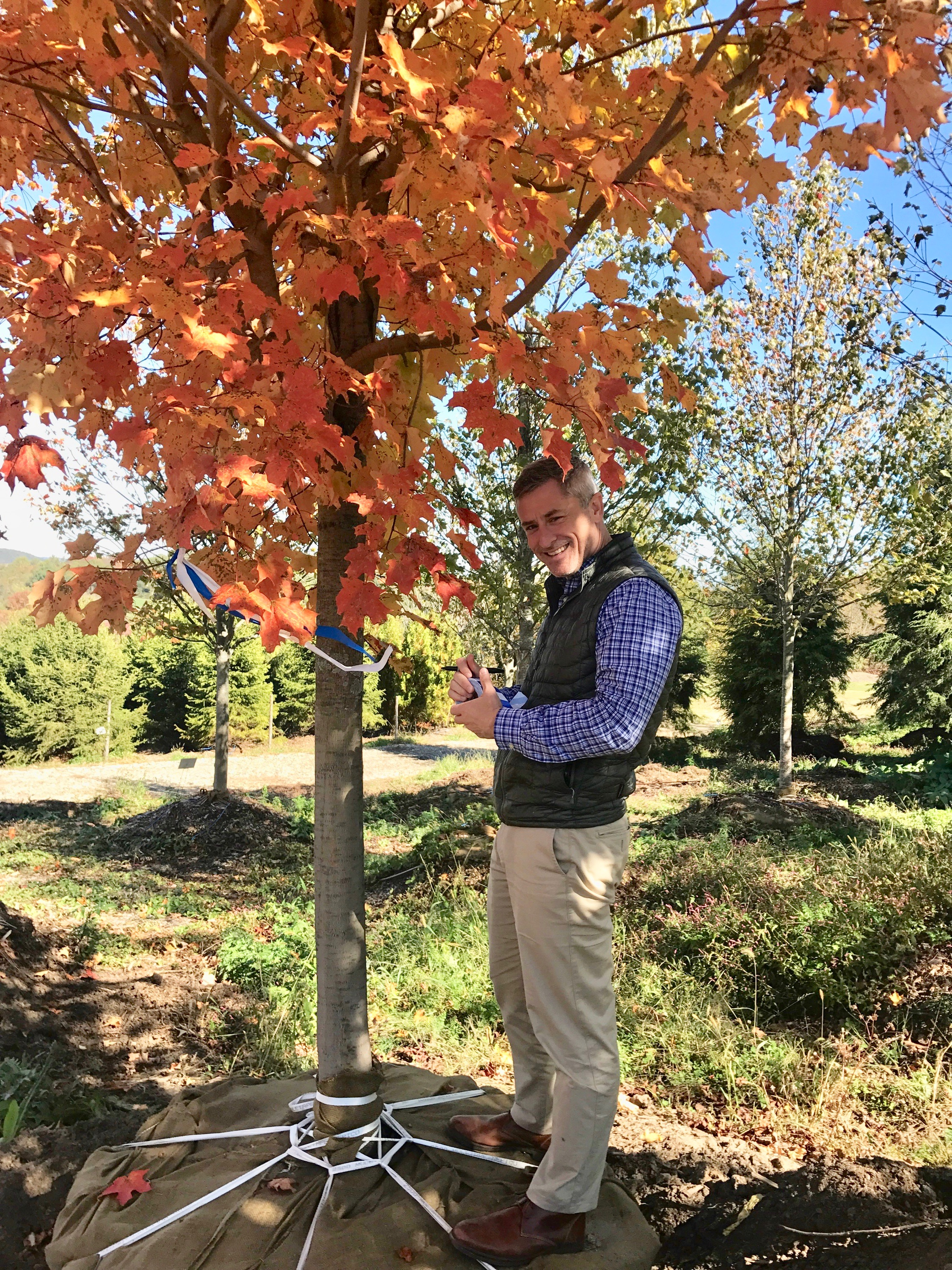 Hardscrabble Nursery: Christian Miller marks a Sugar Maple for the Village Green