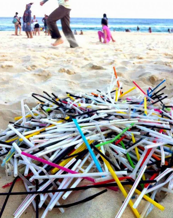 Straw facts... - Americans use 500 million disposable plastic straws/day.Straws are one of the most common litter items found on beaches.Marine animals mistake straws for food and can choke on them.Plastic straws are made from polypropylene, a petroleum-based non-renewable plastic.Chewing on straws is bad for your teeth.It's a convenience, not a necessity. For most of us, it's a habit of convenience and habits can be changed!READ MORE HERE ....