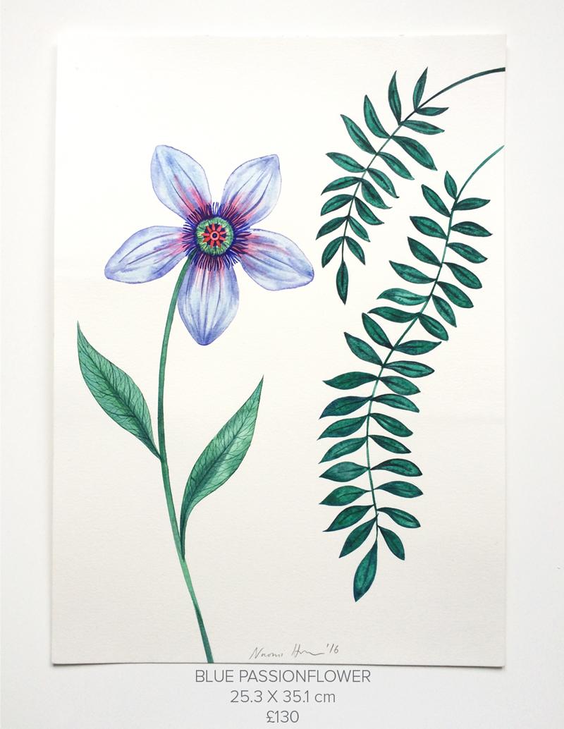 Blue-Passionflower.jpg