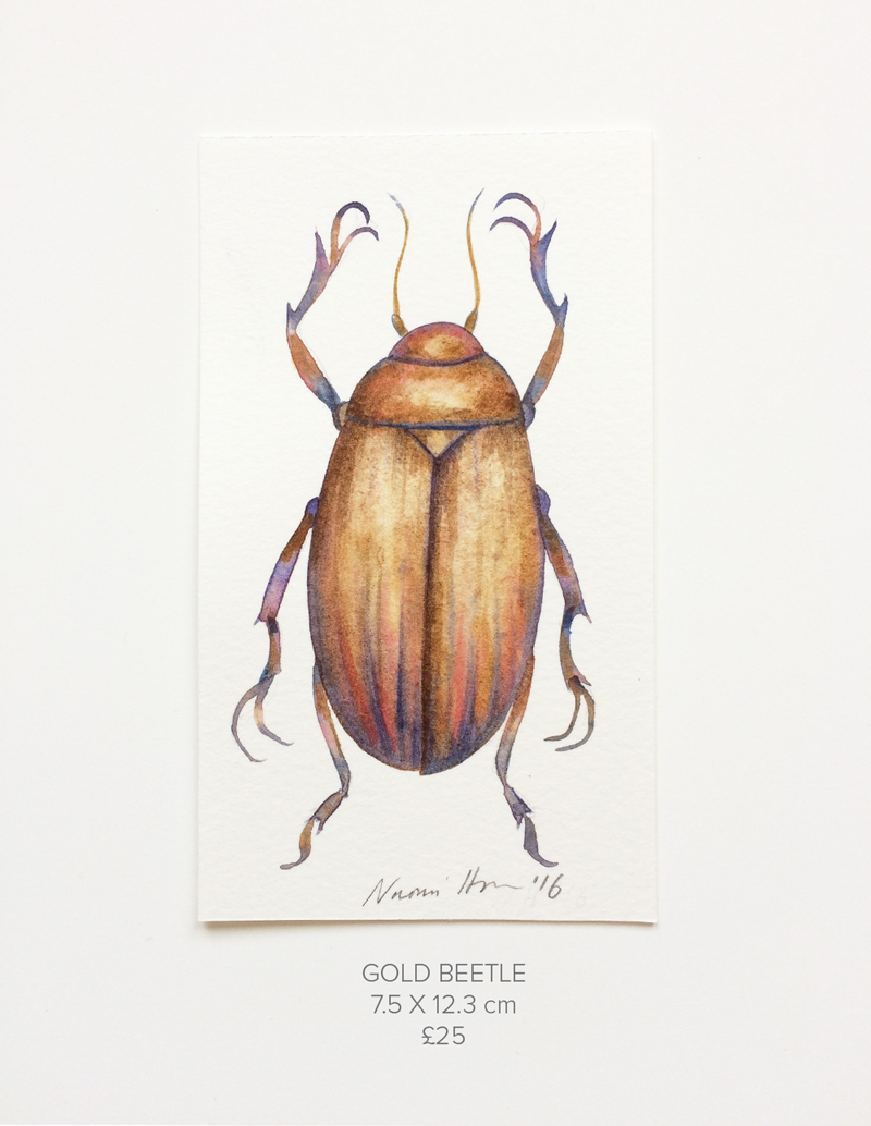 Gold-Beetle.jpg