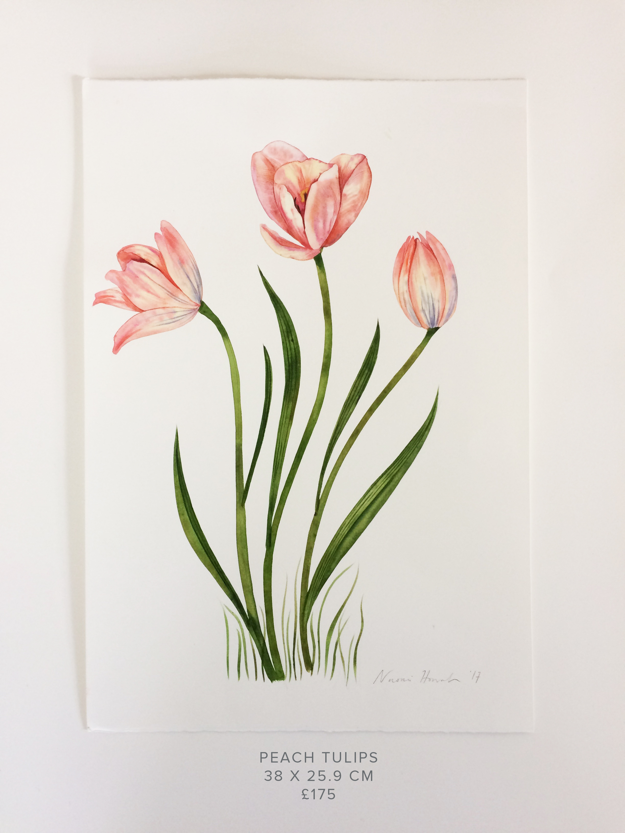 Peach Tulips PS.jpg