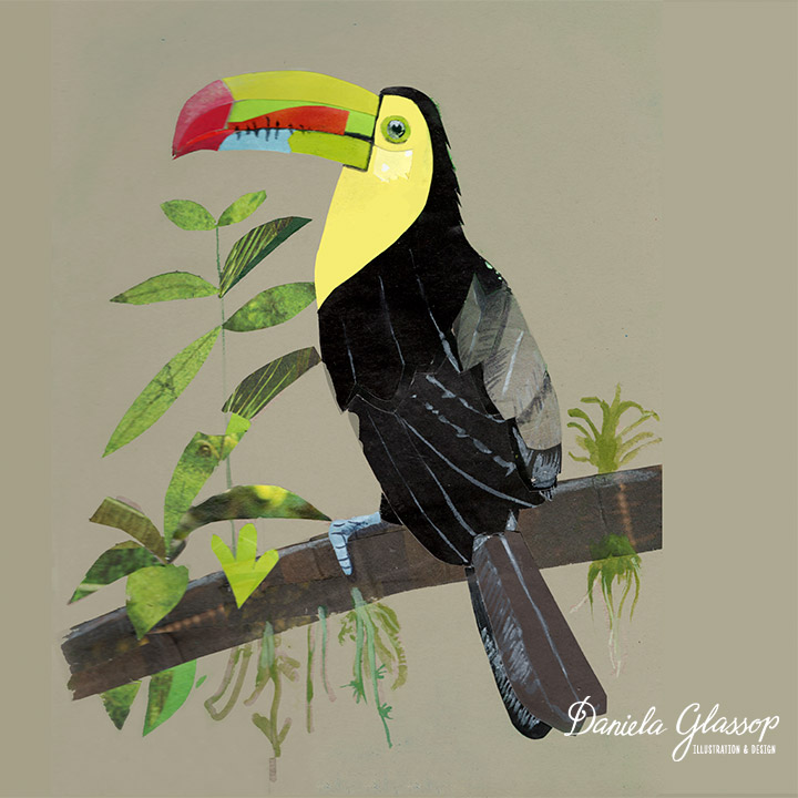 Toucan-CollagedColourfulBirds-DanielaGlassop.jpg