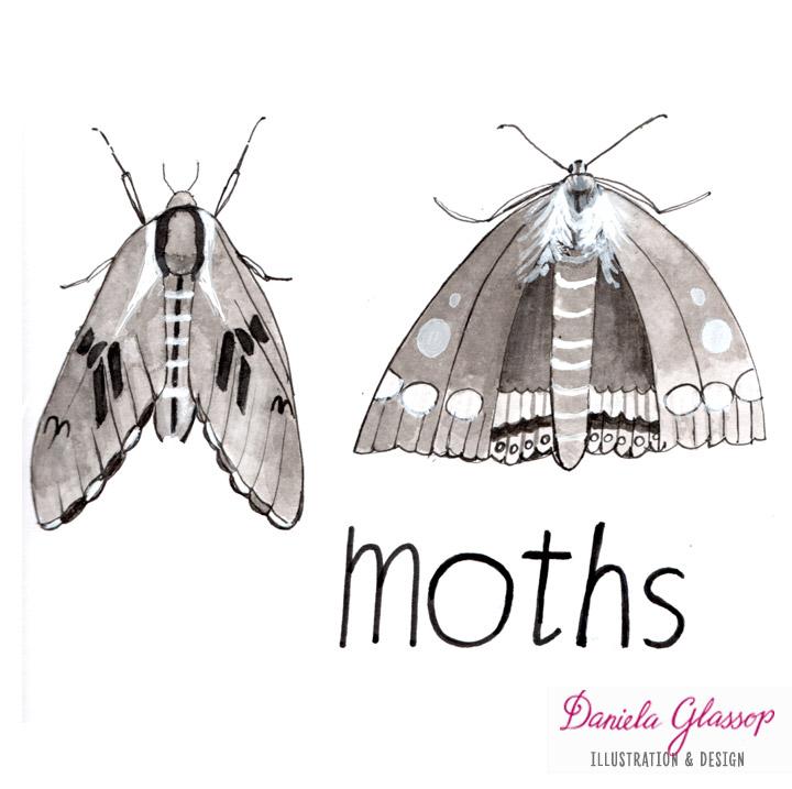 InktoberCB-Day7-Moths-DanielaGlassop.JPG