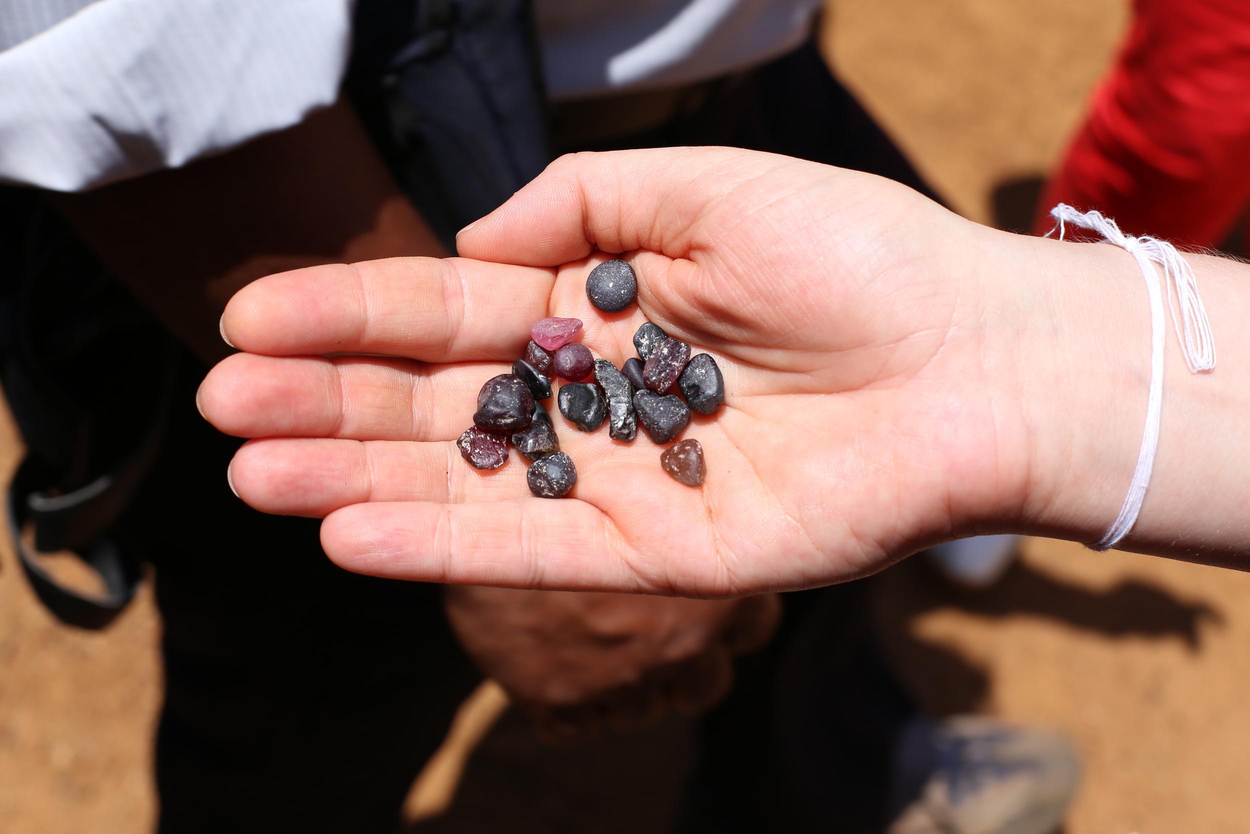 Field Trip To Sri Lanka 2012