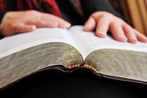 bible web.jpg
