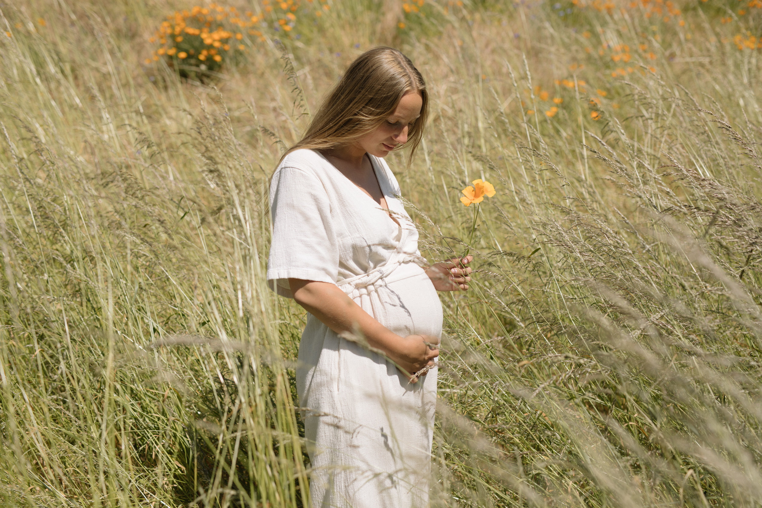 wild flower maternity photos victoria bc