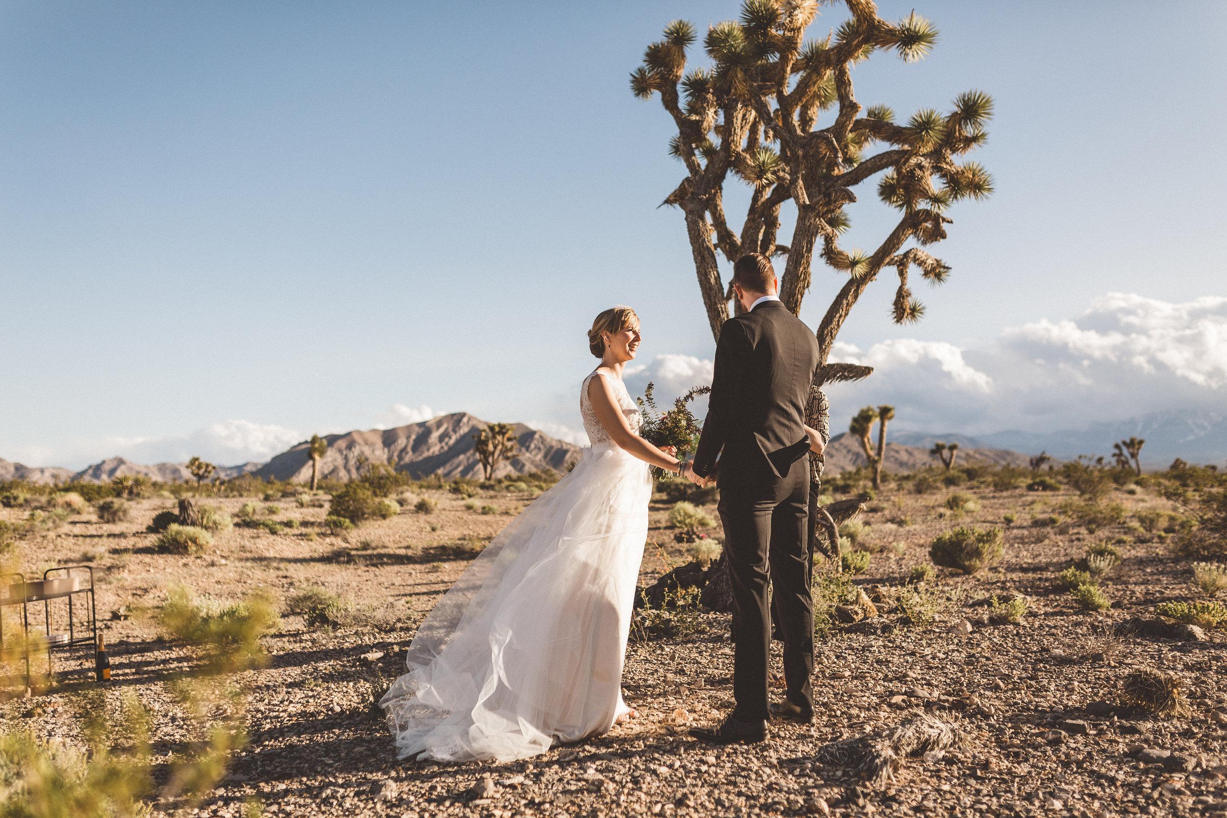 meike-and-rene-las-vegas-desert-elopement2.jpg