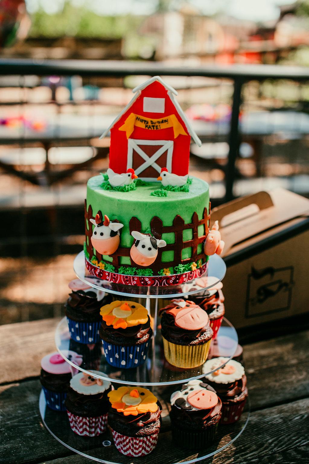 Farm animal birthday cake | Kates 3rd birthday | Hannahillphotography.com | Durham, NC Family photographer