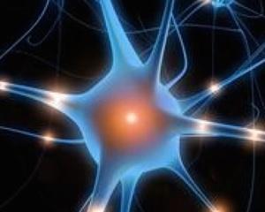 Increased Intelligence Is a Myth (So Far)