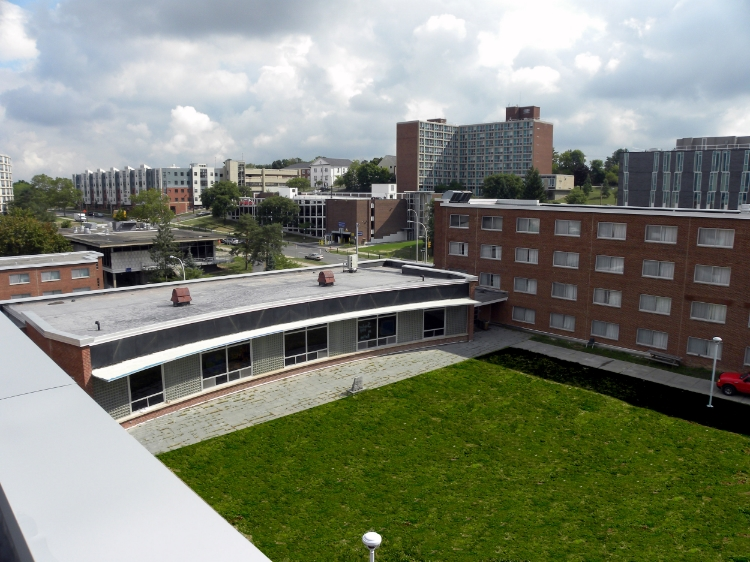 WATSON HALL ROOF / WATERPROOFING
