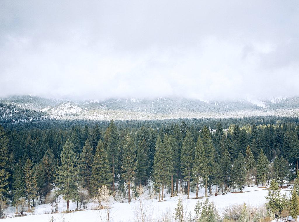 Tahoe2016_056.jpg