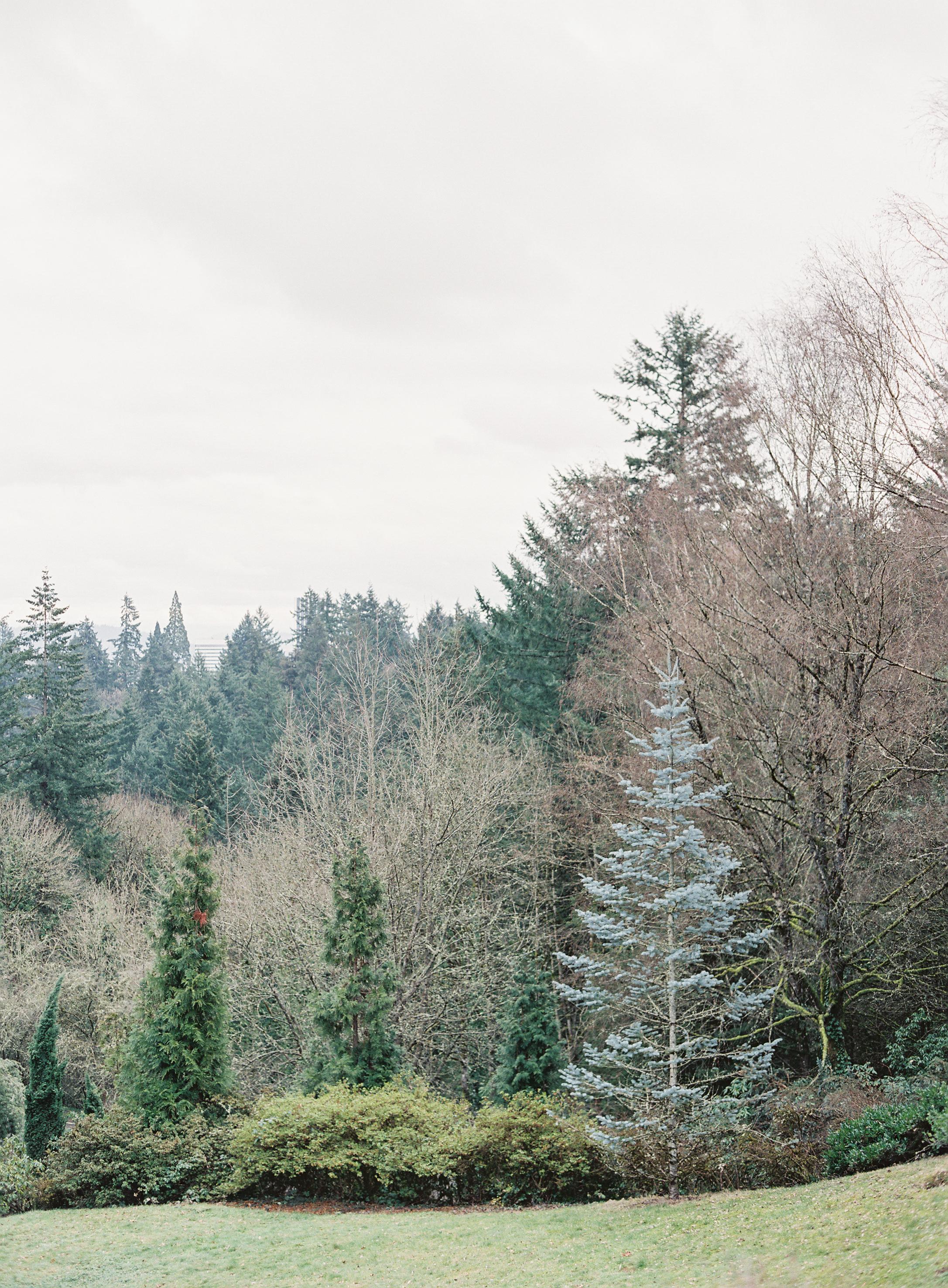 NCP_Oregon_017.jpg