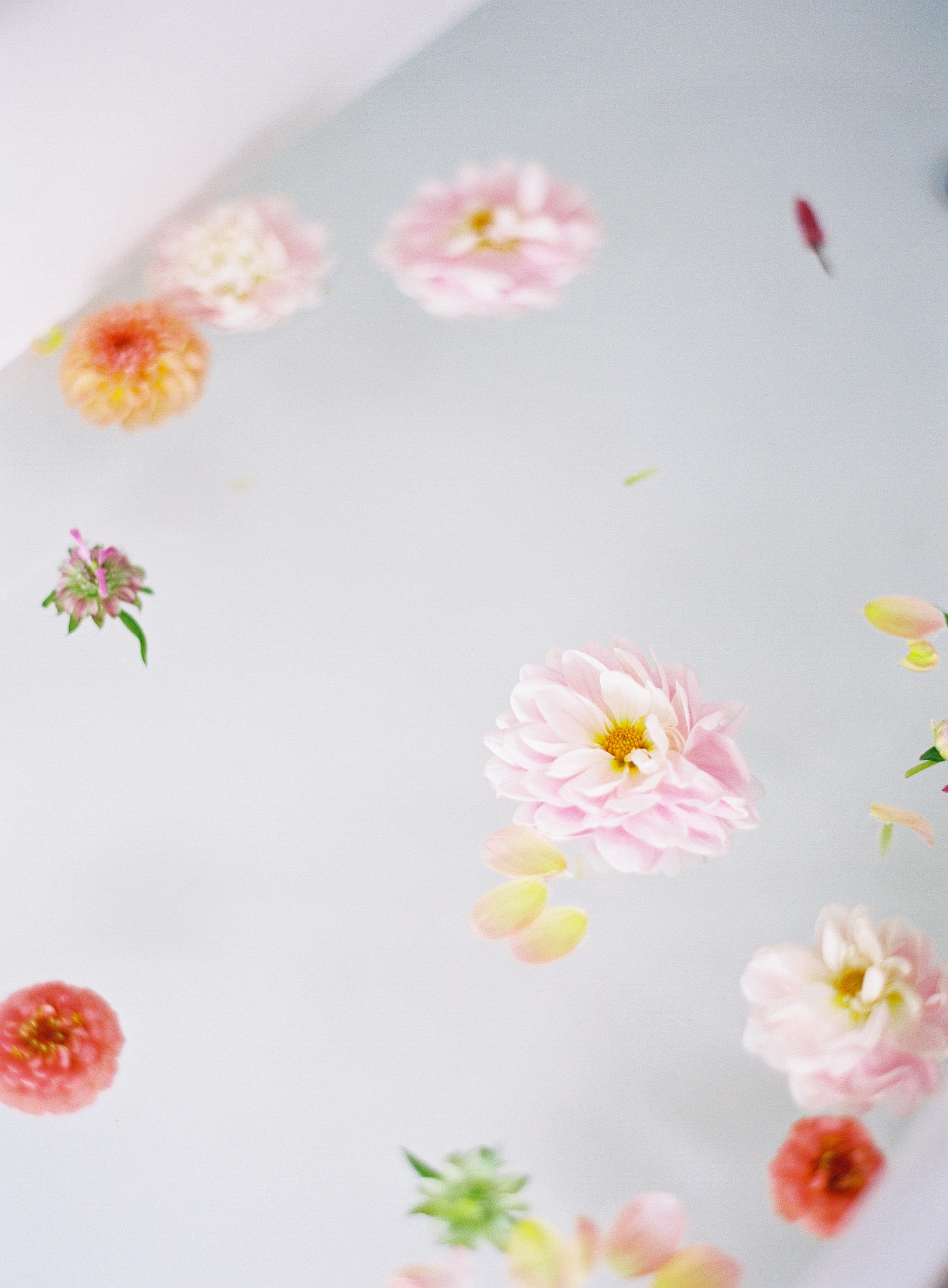 Nathalie Cheng Photography_14.jpg