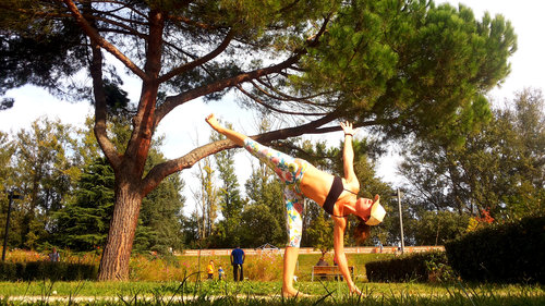 blagnac.hatha-yoga.jpg