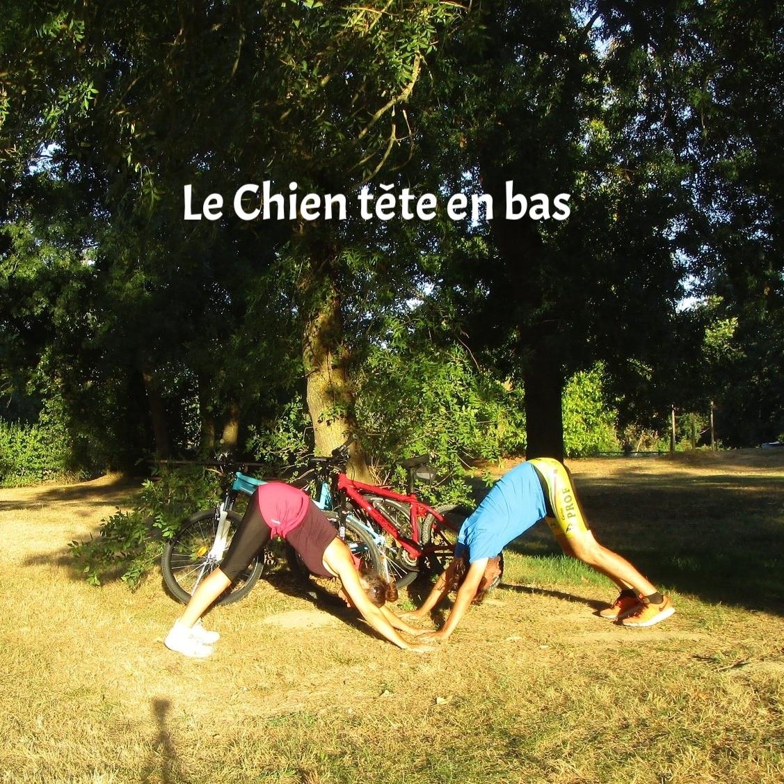 yoga-cycliste6.jpg