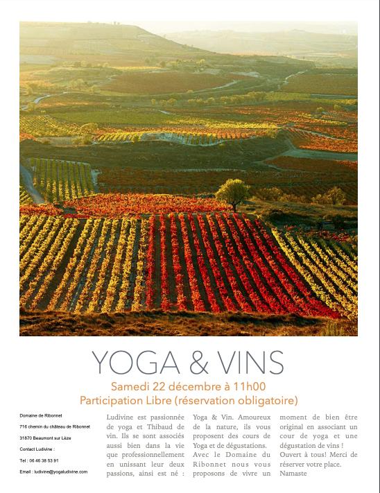 yoga-vins.jpg