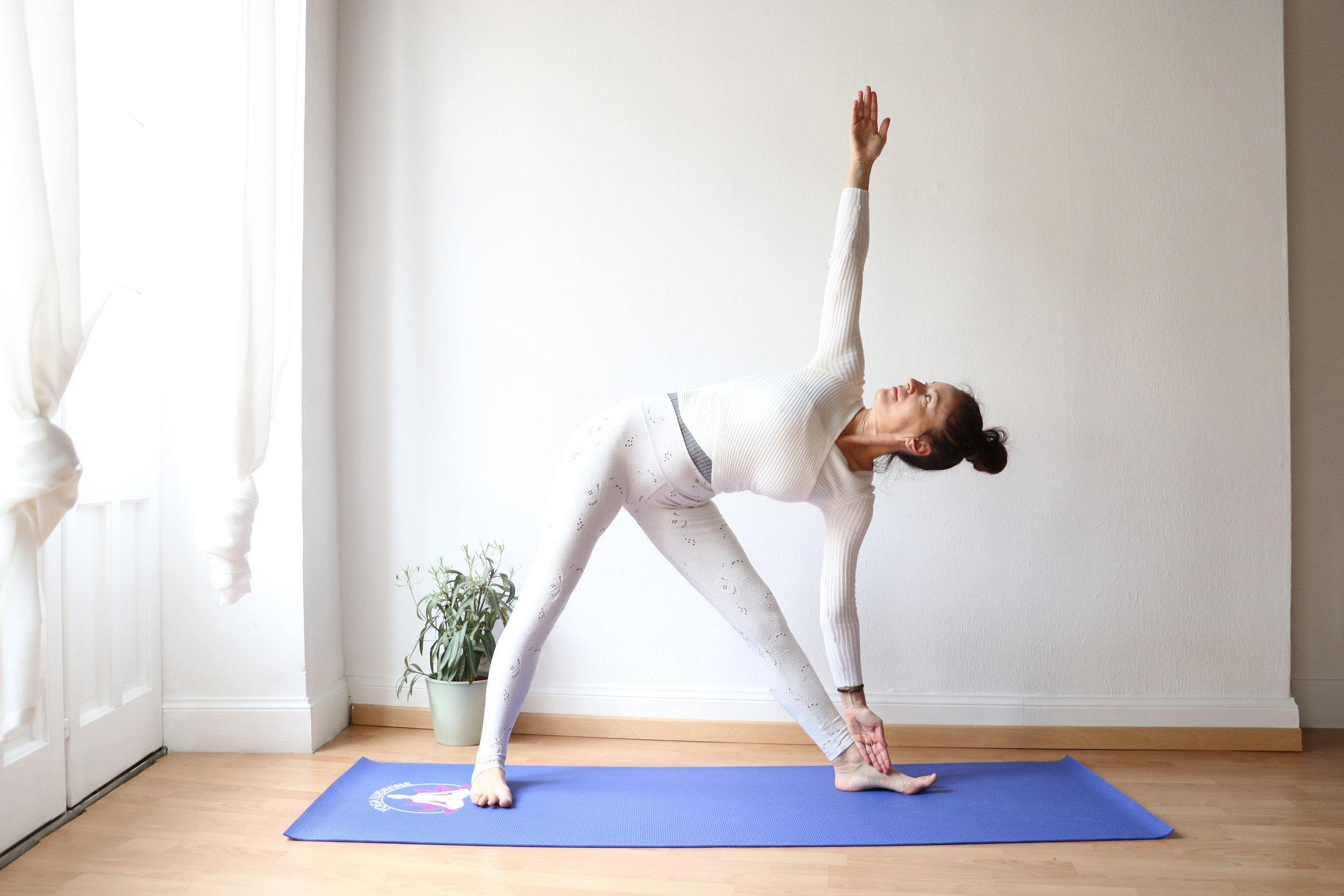 triangle-yoga2.jpg