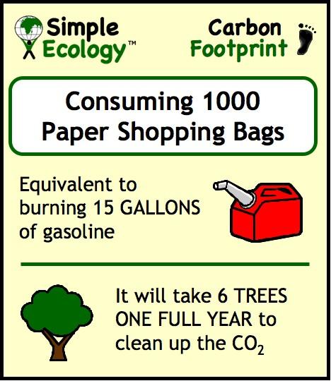 Shopping Bags Simple SummaryB.jpg