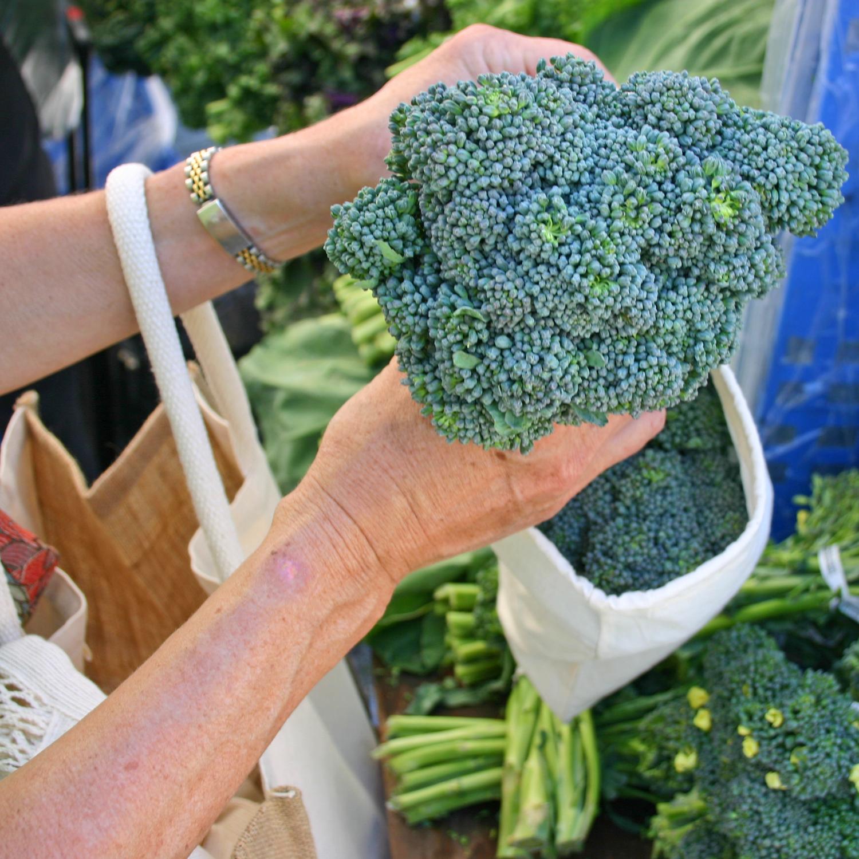 Muslin Broccolini S.jpg