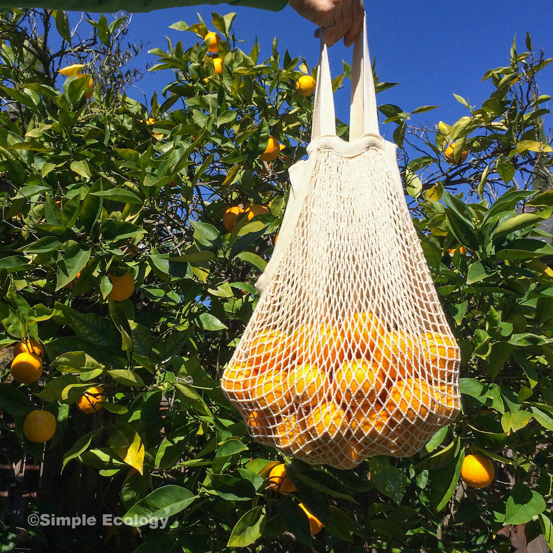 String Oranges SW.jpg