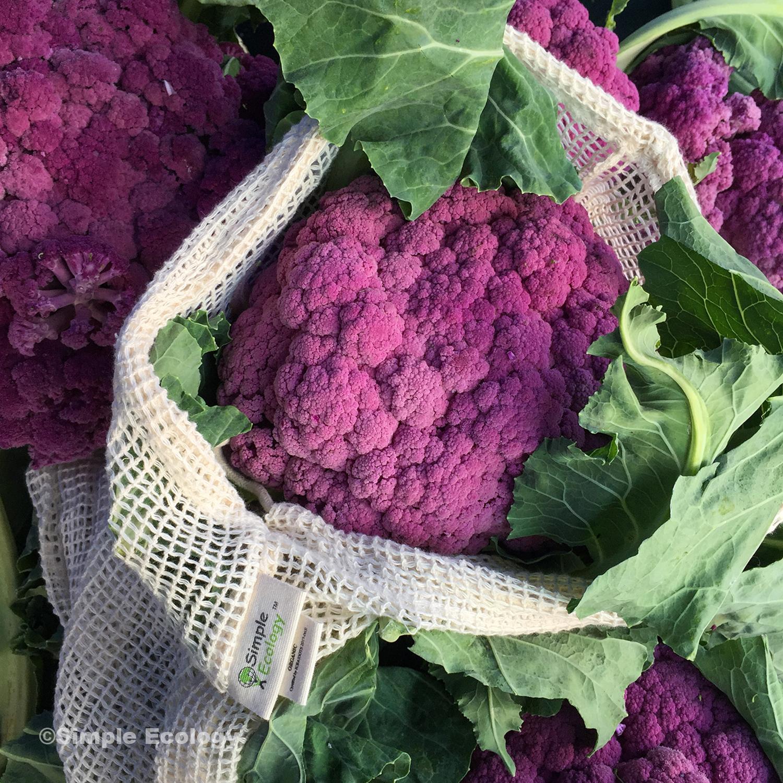 Mesh Purple Cauliflower SW.jpg