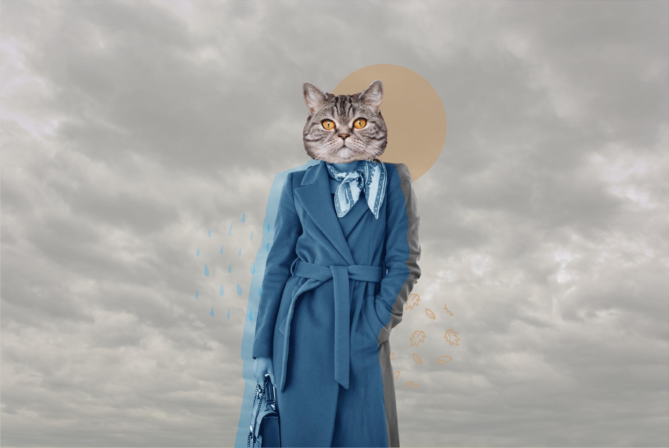 Ilustración de Luly Gosne - Pimienta Estudio