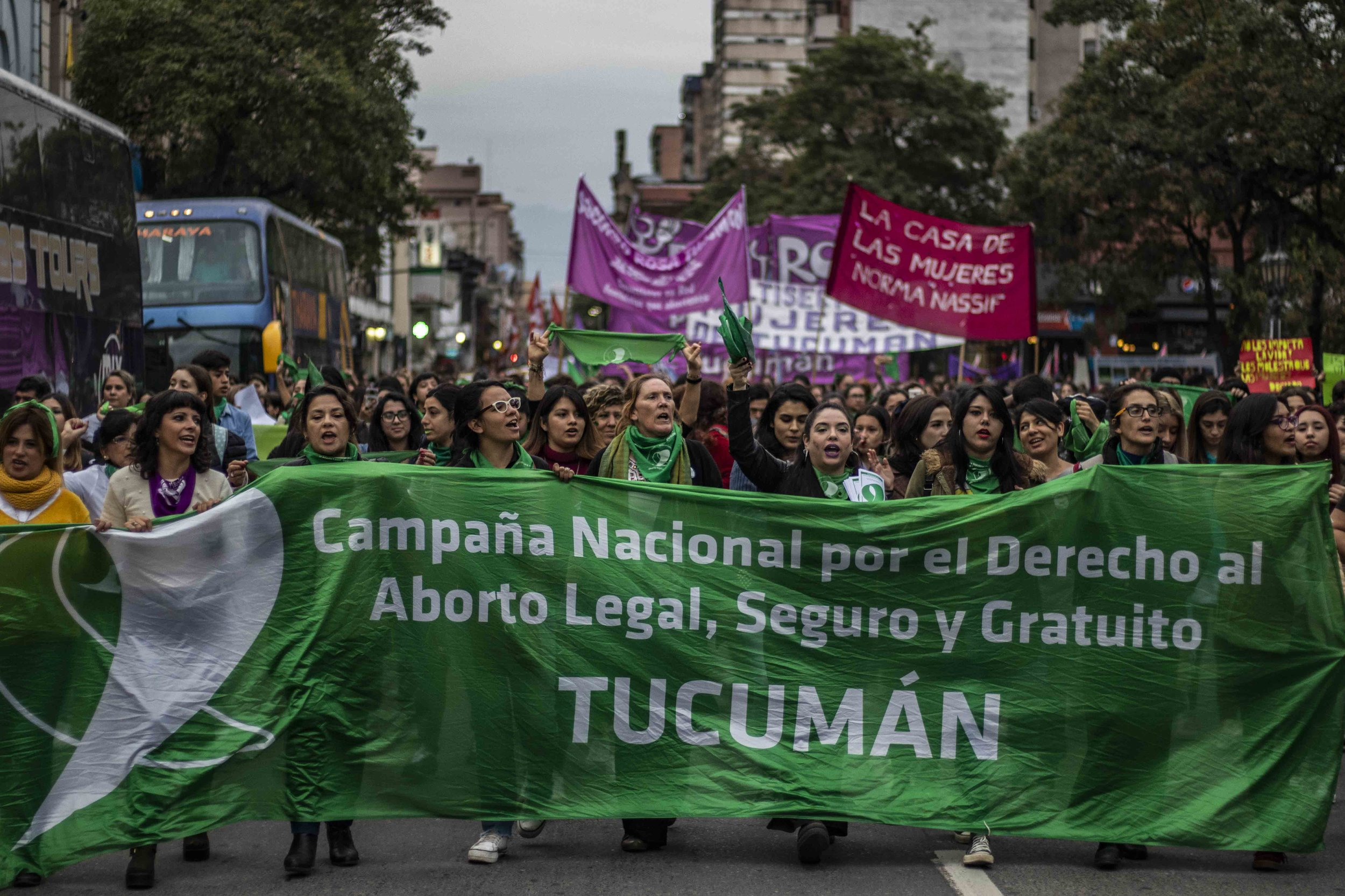 190528-pañuelazo-ley-aborto-tucumán-la-palta-ignacio-lopez-isasmendi17.JPG