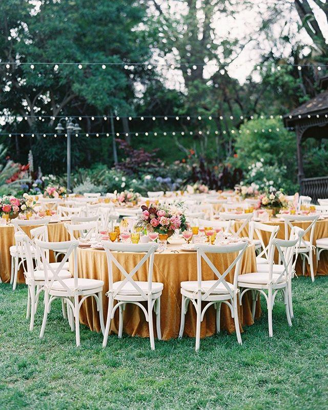 Nothing better than summer nights spent together... ⠀⠀⠀⠀⠀⠀⠀⠀⠀ ⠀⠀⠀⠀⠀⠀⠀⠀⠀ Design + Planning: @amorology ⠀⠀⠀⠀⠀⠀⠀⠀⠀ Photo: @spostophoto⠀⠀⠀⠀⠀⠀⠀⠀⠀ Florals: @poseypop⠀⠀⠀⠀⠀⠀⠀⠀⠀ Venue: @sandiegobotanicgarden ⠀⠀⠀⠀⠀⠀⠀⠀⠀ ⠀⠀⠀⠀⠀⠀⠀⠀⠀ #sandiegowedding #weddinginspo #romanticwedding #summerwedding #yellowwedding #sandiegobotanicgardens #summernights #gardenwedding