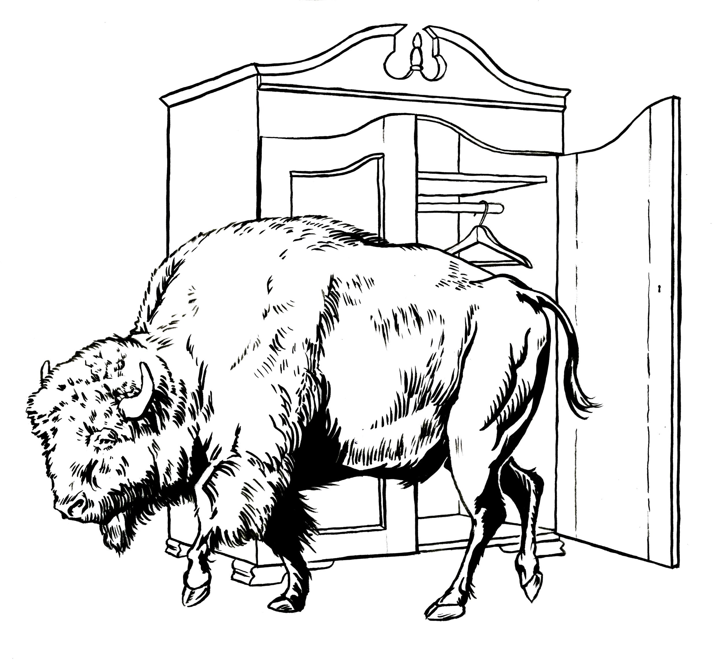 buffalowardrobe.jpg