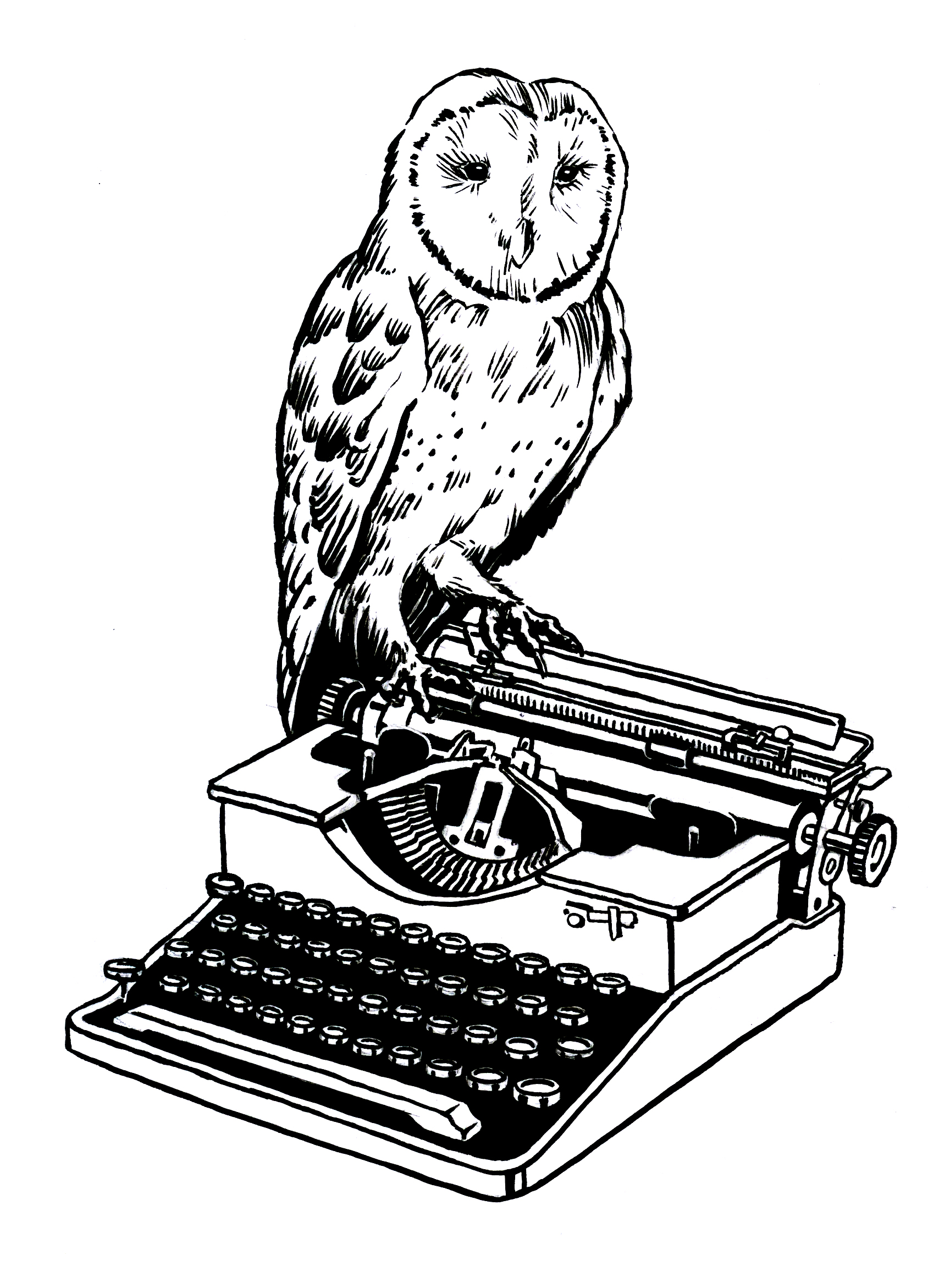 owltypewriter.jpg