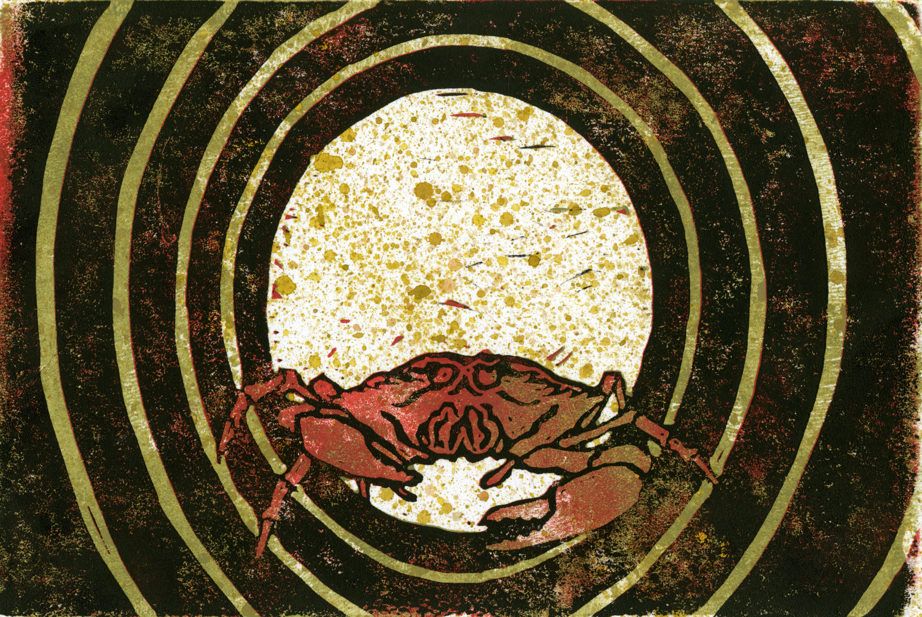 lauritano_2013_crab2.jpg
