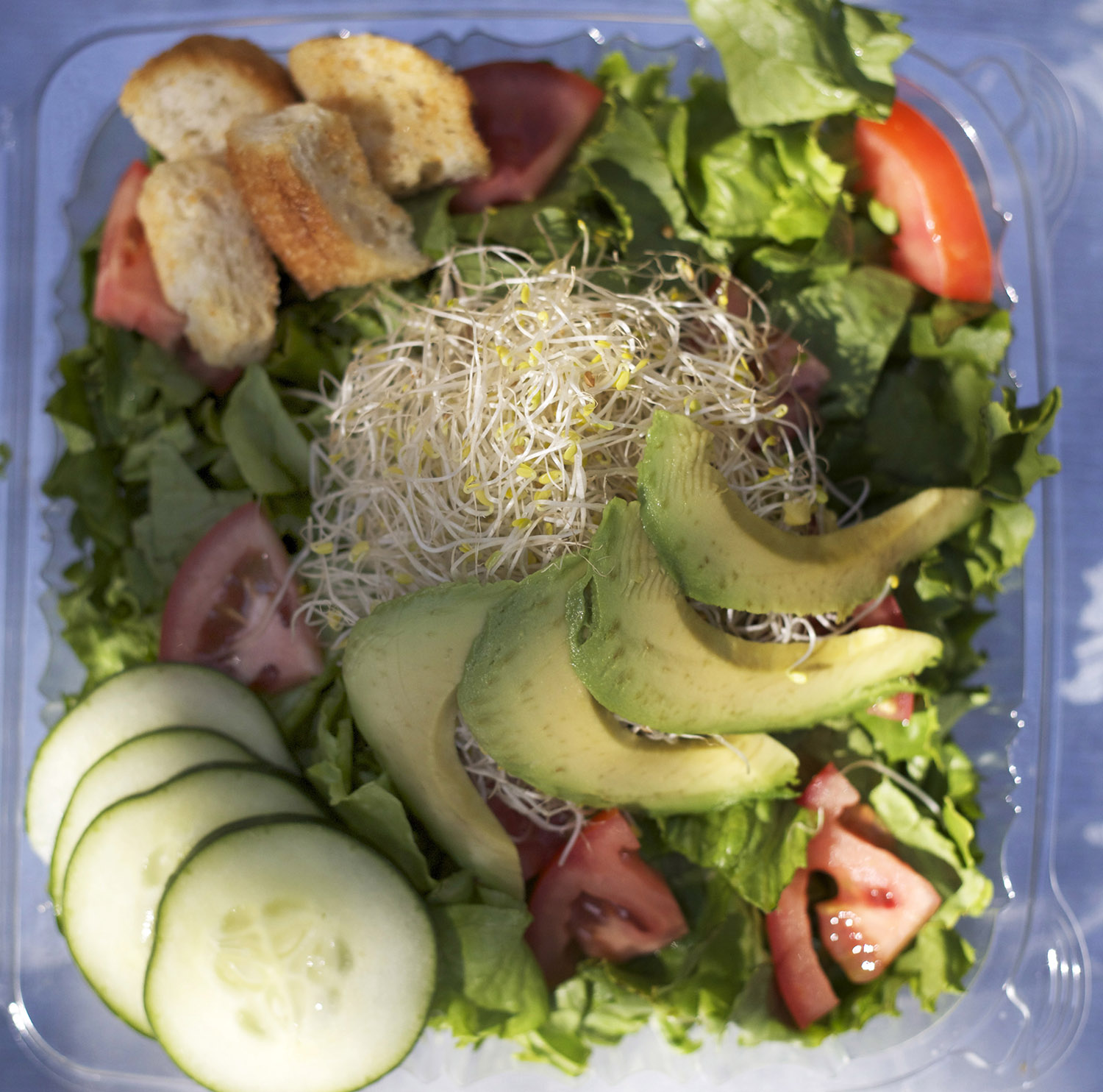 green leaf lettuce • tomato • cucumber • sprouts • croutons • avocado
