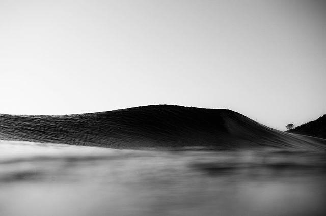 Chasing waves.  Photo Credit: Woody Gooch