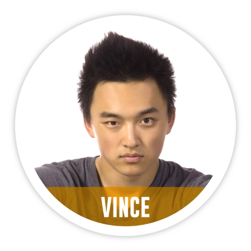 Can you identify the ACEs in Vince's life?