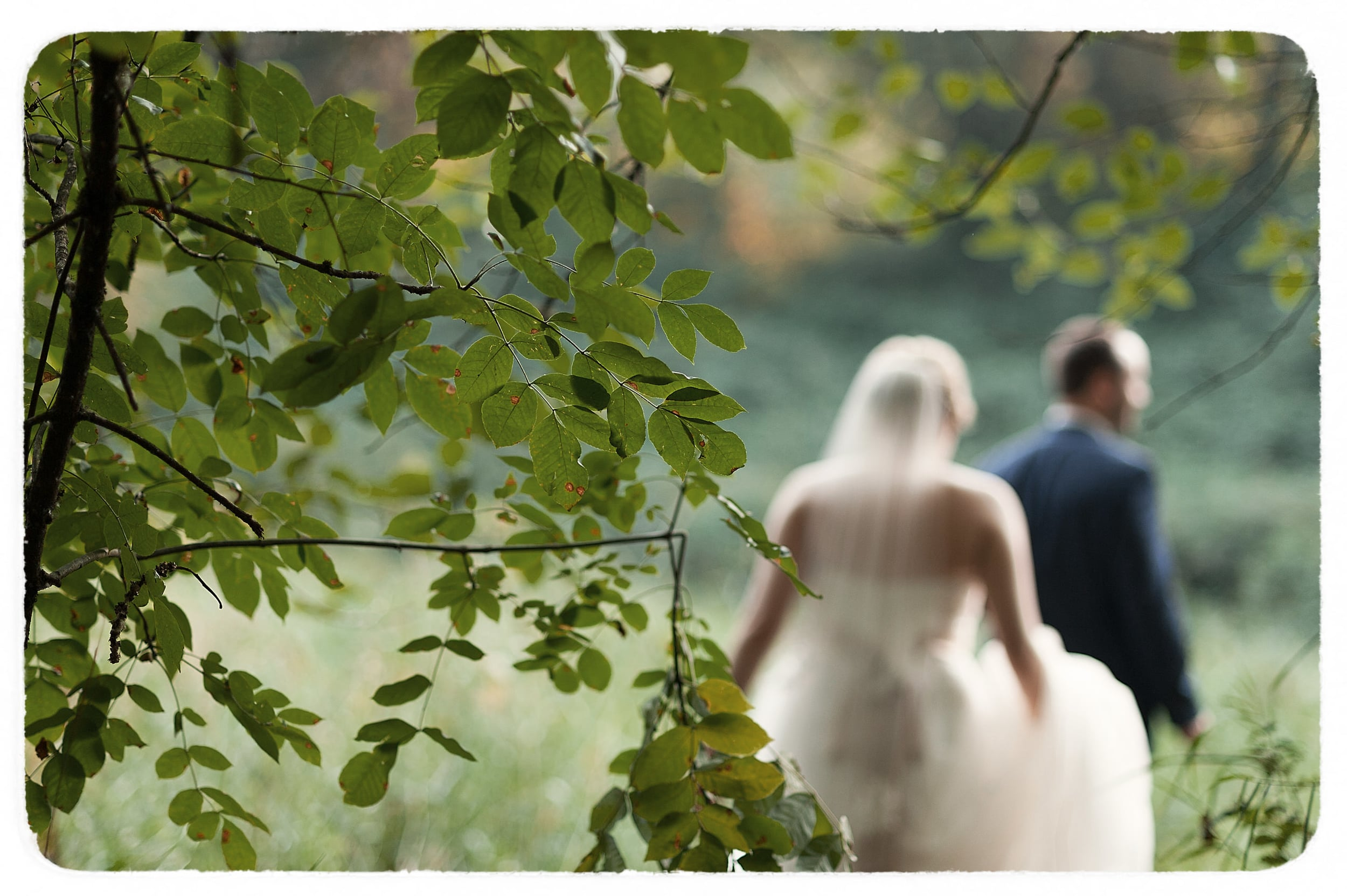 494 Kate&Marc-Wedding-OriginalCollection-494Film.jpg