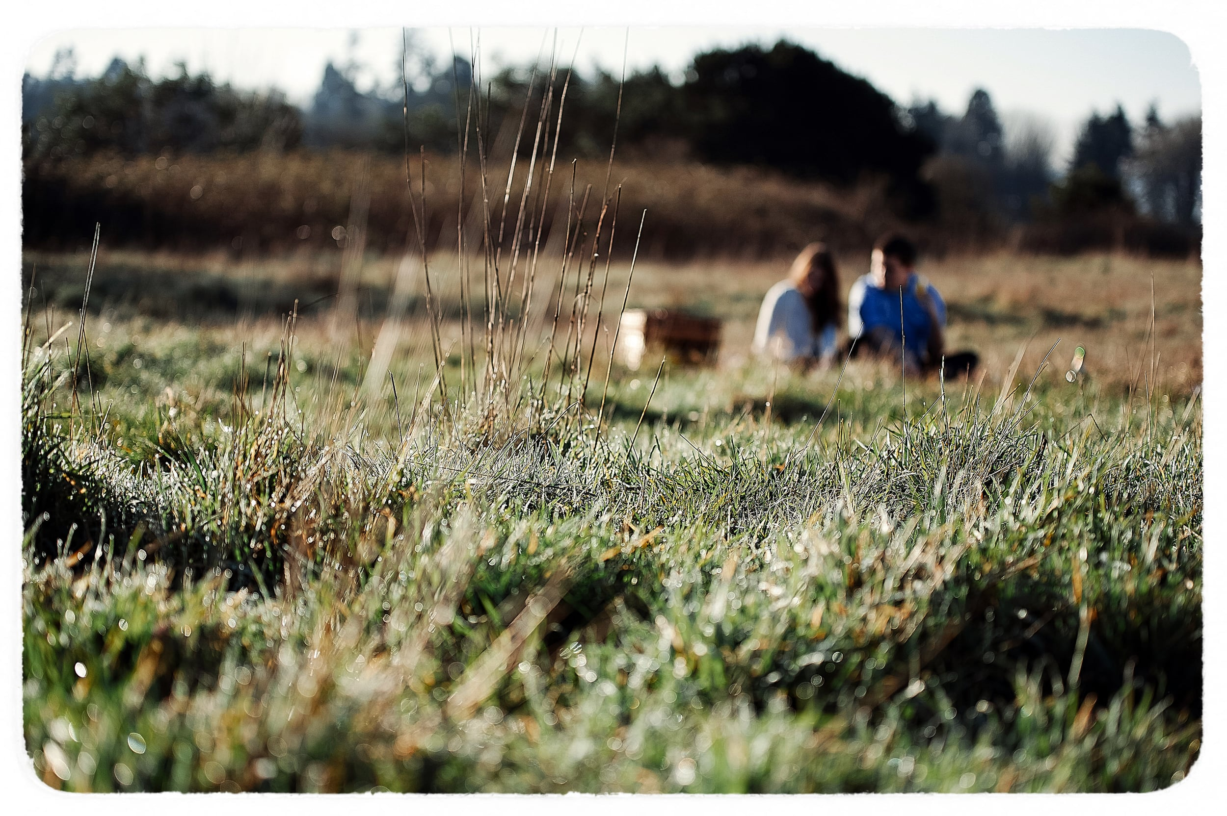 Katherine & Drew - NEW gallery-7Film.jpg