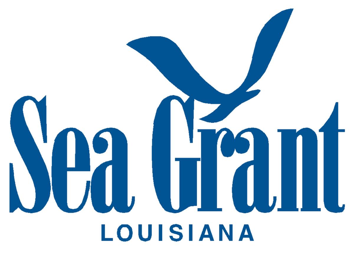 LSG-logo-blue.png