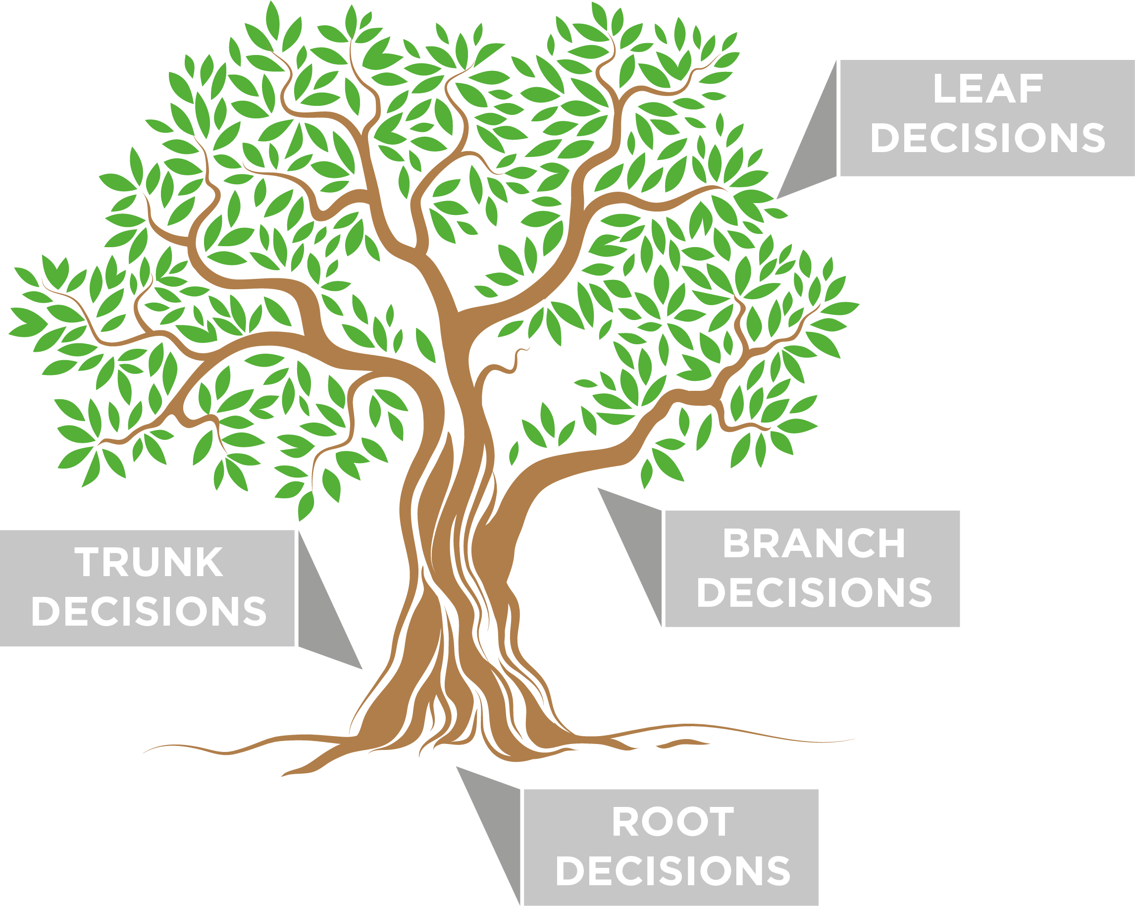 the-decision-tree-process
