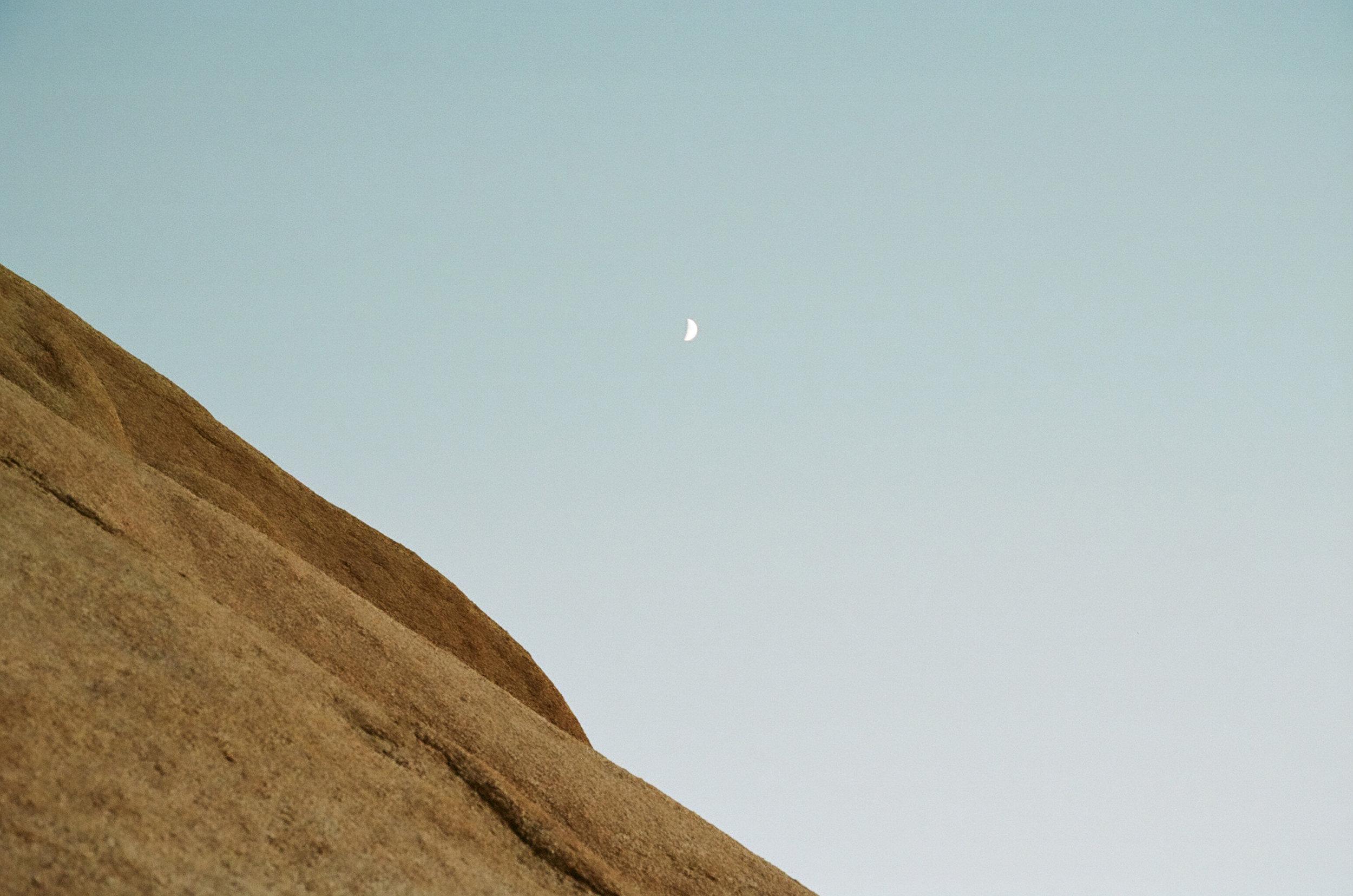 dusk-moon-joshua-tree-cameliamanea.jpg