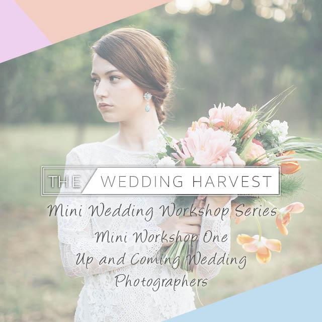The Wedding Harvest 640px INSTAGRAM.jpg