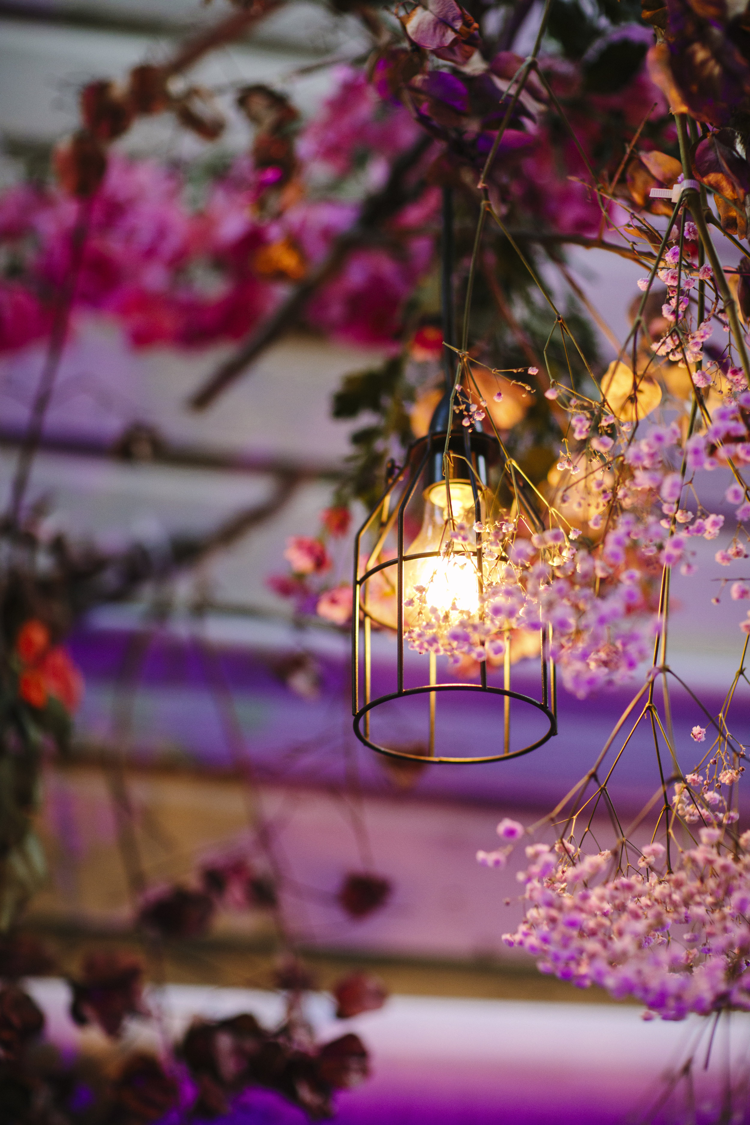 Lighting by @brisbanefestoonhire was nestled amongst florals by @garden.graffiti