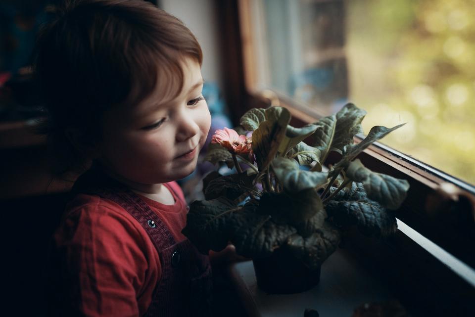 PortraitPhotography_Yorkshire_FamilyPhotgraphyYorkshire_SarahMasonPhotography