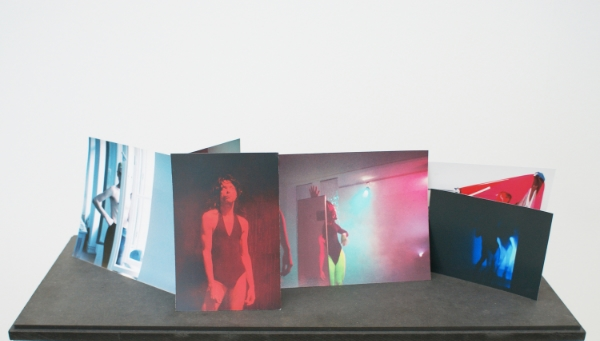Advanced Veil Painting , 2010 Archival inket prints, silicon, MDF 22 x 72.5 x 30 cm