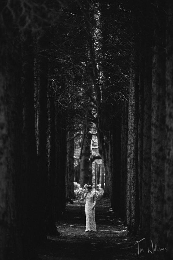 Tim Williams Photography 001.jpg