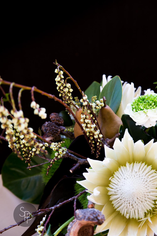 SPP_Floral+Ink_WolganValley_web-8227.jpg