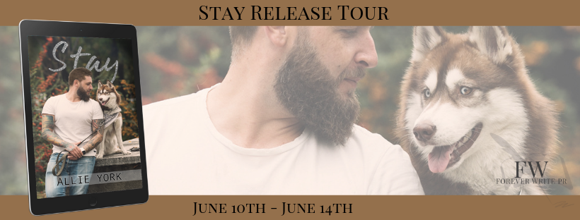 Stay Tour Banner.png